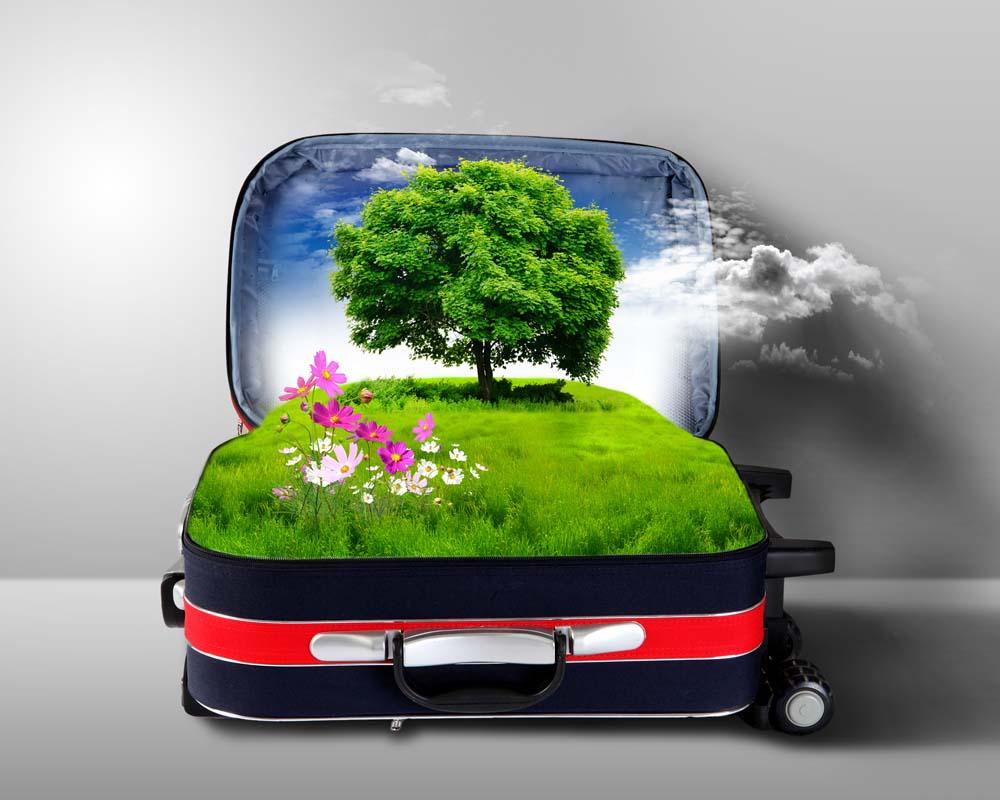 Island Trader Vacations Reviews 5 Top Green Travel Tips