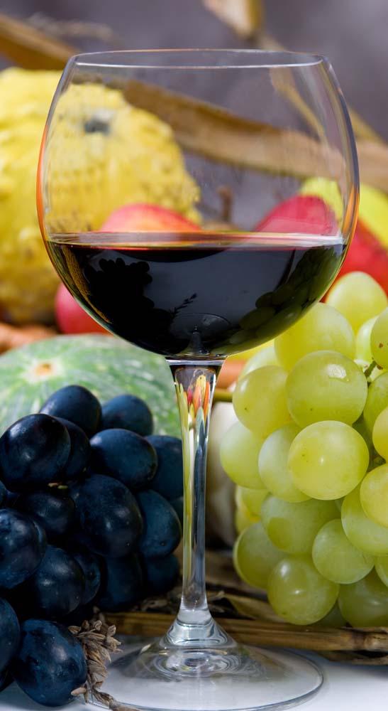 Island Trader Vacations Reviews Michigan Wine Travel