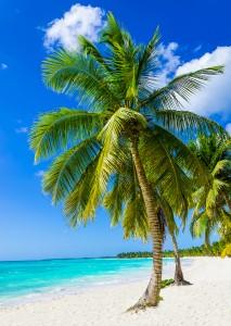 Island Trader Vacations Explores 3 Romantic Island Retreats